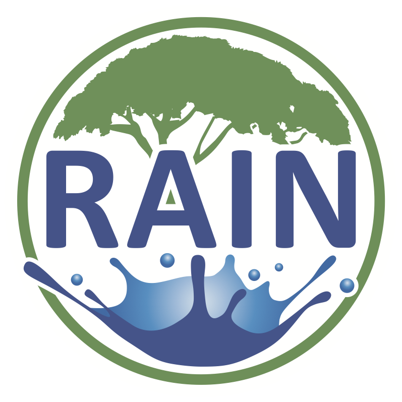 003-logo-rain